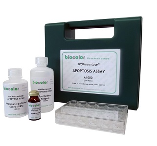 Apopercentage Apoptosis Assay Kit 768x768